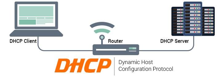 DHCP là gì và giao thức cấu hình host động là gì
